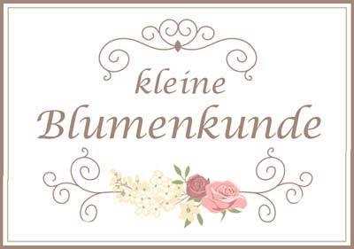 Trauerfloristik-Blumenkunde