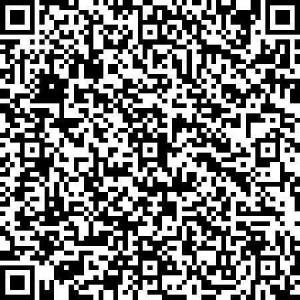 qr_code_masermann-neumann_klein-300x300