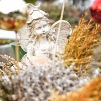 Friedhoefe-und-Trauerhallen-in-Essen-Friedhof-Katernberg