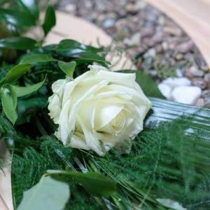 Weise Rose mit Beigrün auf Lebensfluss-Sarg